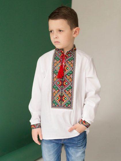 Сорочка для хлопчика з яскравою вишивкою