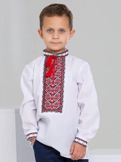 Вишиванка для хлопчика з класичним орнаментом